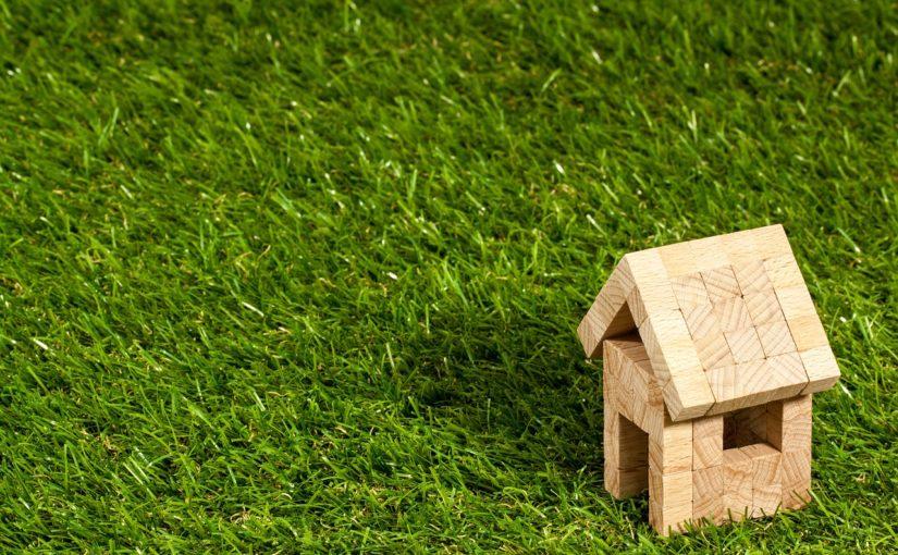 zielone dachy ekstensywne